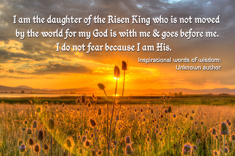 Daughter of the king famous quote