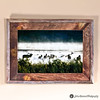 MOST POPULAR - Wildlife Metal Art Print of Elk, Ducks, and Geese on a Misty River framed in Rustic Reclaimed Barn Wood.